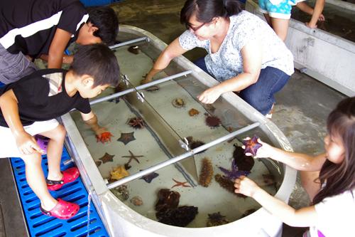 【写真1】24日に開催された水産総合研究センター東北区水産研究所一般公開のようす=宮城県塩釜市