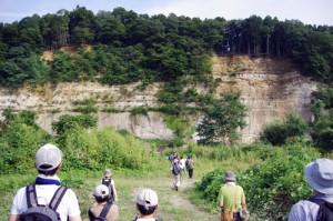 ③約350万年前の大規模な火山活動によって現在の仙台市街地一帯を埋め尽くした火砕流堆積物(広瀬川凝灰岩部層)