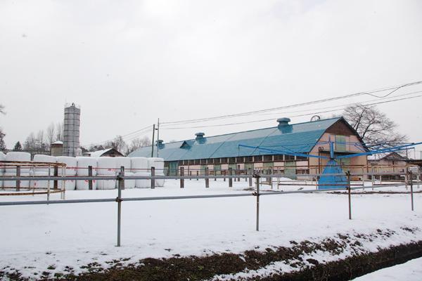 図 6 宮城県畜産試験場の外観