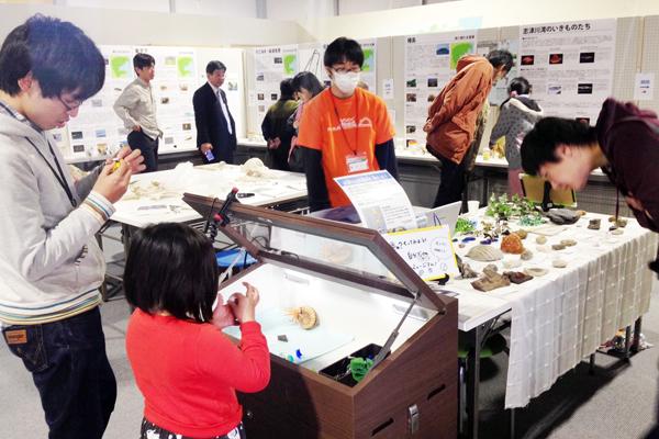【図1】3月21日から22日まで南三陸ポータルセンターにて開催された「志津川湾展 -南三陸の生きものたち-」