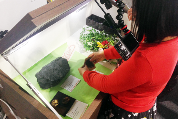 【図4】東北大学総合学術博物館の学生有志「みちのく博物楽団」による南三陸などの化石を用いた展示体験