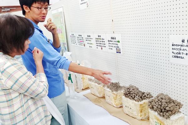 【写真5】「きのこの成長を観察しよう!」(宮城県林業技術総合センター)