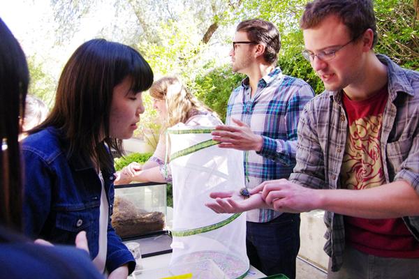 【写真12】UCRで昆虫学の研究者と交流する高校生たち